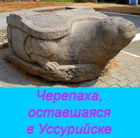 http://rezerv.narod.ru/history/19-zhcherepaha2.jpg